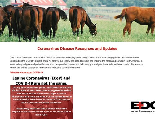 Equine Disease Communication Center Launches Online  Equine Coronavirus and COVID-19 Resources