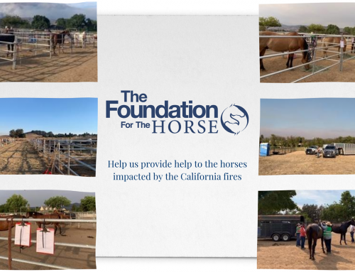 The Foundation for the Horse Awards $5,000 to Veterinarian Groups Providing California Fire Equine Relief