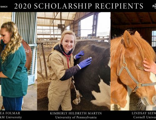 The Foundation for the Horse Announces 2020 Recipients of $75,000 Coyote Rock Ranch Scholarships